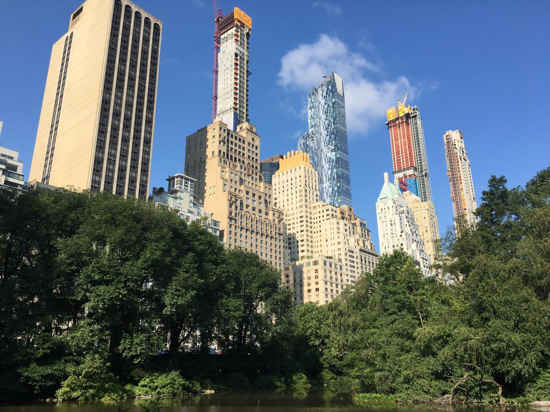 Photo of NYC skyline from central park